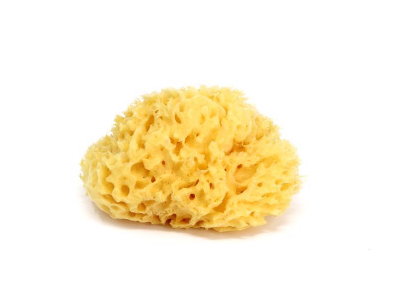 OK BABY Hubka na umývanie Honeycomb 10
